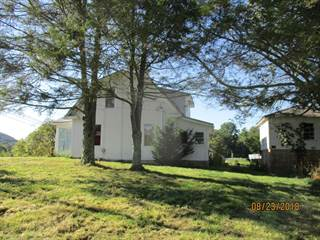 Single Family for sale in Rt 20 N 3487 Hinton Road, Athens, WV, 24712