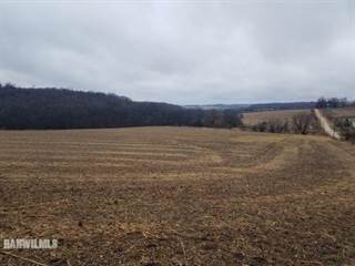 Farm And Agriculture for sale in Tbd (1) Lonesome, Pearl City, IL, 61062