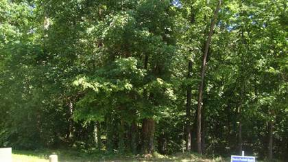 Lots And Land for sale in LOT 97 REDFORD COURT, Benton, AR, 72019