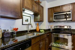 Apartment for rent in Dunton Tower - A1, Arlington Heights, IL, 60005