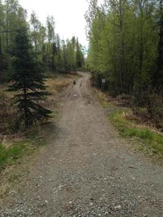 Lots And Land for sale in 6218 S Sweetwater Street, Big Lake, AK, 99652