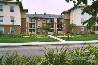 Apartment for rent in Solara Court Senior, Anaheim, CA, 92801