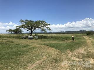 Farm And Agriculture for sale in Road 116 between Kilometer 13 and 14, Lajas, PR, 00667
