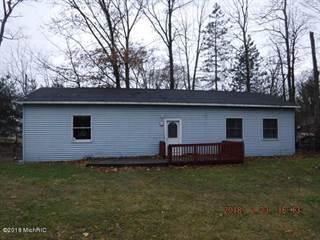 Single Family for sale in 4730 Princess Drive, Orangeville, MI, 49344