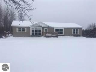 Single Family for sale in 3671 E Beeler, Merritt, MI, 49651