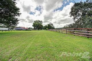 Farm And Agriculture for sale in 10750 NW 7th St, Ocala, FL, 34482