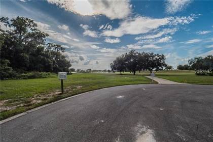 Lots And Land for sale in LOT I 17 CYPRESS POINTE, Tavares, FL, 32778