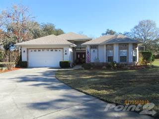 Residential Property for sale in 12345 Knotty Pine Court, Spring Hill, FL, 34609