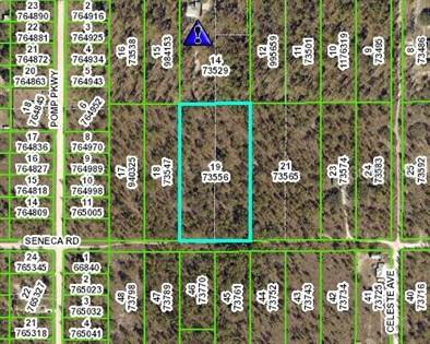 Lots And Land for sale in 13195 SENECA ROAD, Annutteliga Hammock, FL, 34614