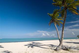 Condominium for sale in Punta Cana Walk to the Beach 1 Bdr Condo, Dominican Republic, Punta Cana, La Altagracia