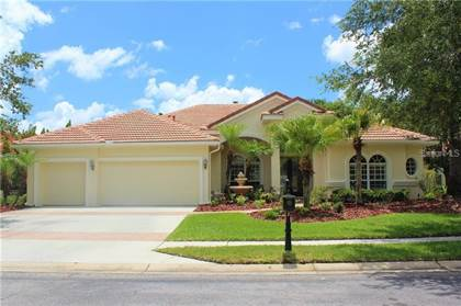 Residential Property for sale in 17206 EMERALD CHASE DRIVE, Tampa, FL, 33647