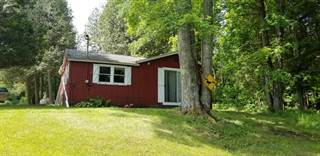 Single Family for sale in 9489 N 192nd Avenue, Colfax, MI, 49402