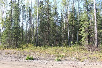 Lots And Land for sale in 462 N Forest Hills Drive, Wasilla, AK, 99654