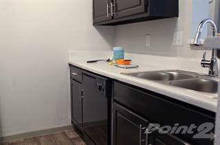 Apartment for rent in The Westside - Basswood - One Bedroom/One Bath, Plano, TX, 75075
