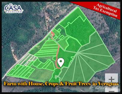 Residential Property for sale in Farm with House, Crops & Fruit Trees plus a Stream for Sale, Santiago, Veraguas