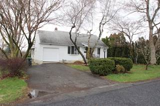 Single Family for sale in 303 Sussex St, Upper Pohatcong, NJ, 08865