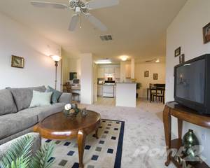 Apartment For Rent In Grande Court North Port   2 Bed/2 Bath, North