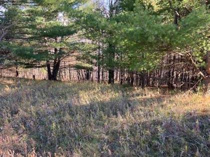 Lots And Land for sale in 98 AVEBURY WAY, Gladwin, MI, 48624