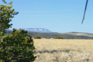 Land for sale in Lot 217, Antelope way, Quemado, NM, 87829