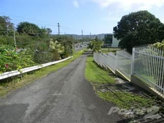 Farm And Agriculture for sale in Road 3 Bo Juan Gonzalez, Rio Grande, PR, 00745