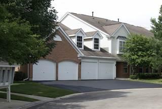 Condo for sale in 1404 Plum Court C, Mount Prospect, IL, 60056