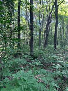 Lots And Land for sale in TBD Off M77, McMillan, MI, 49853