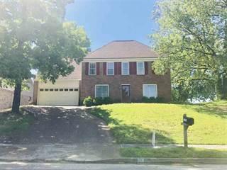 Single Family for sale in 1101 DOVE HOLLOW, Memphis, TN, 38018