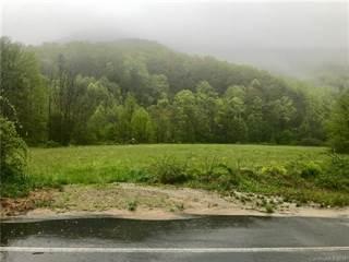 Land for sale in 99999 Black Oak Cove Road, Upper Hominy, NC, 28715