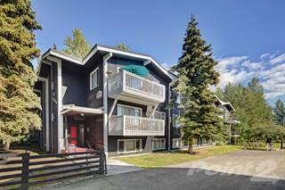 Apartment for rent in The Alaskan Apartments - One Bedroom, Anchorage, AK, 99501