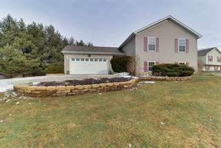 Single Family for sale in 216 Brandy Drive, Mackinaw, IL, 61755