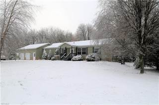 Single Family for sale in 3850 Alexander Rd, Randolph, OH, 44201