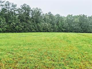 Farm And Agriculture for sale in 127 Mulberry Lane, Hertford, NC, 27944