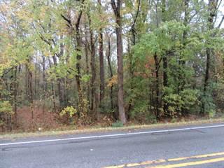 Land for sale in 0 Beaufort Street, Grimesland, NC, 27837