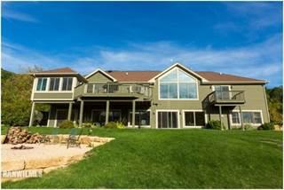 Single Family for sale in 448 Territory 603, Galena, IL, 61036