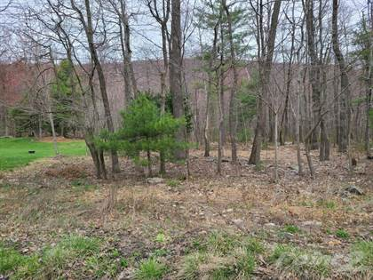 Lots And Land for sale in Blue Mountain Drive, Lehigh Township, PA, 18038