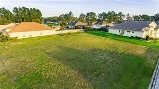 Land for sale in 32236 CORBIN RIDGE STREET, San Antonio, FL, 33576