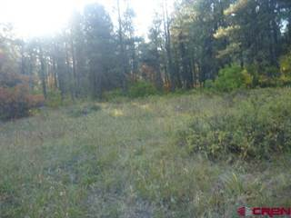 Land for sale in 1142 Eight Mile Loop, Pagosa Springs, CO, 81147