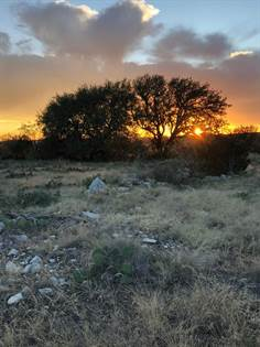 Lots And Land for sale in Hwy 277, Eldorado, TX, 76936