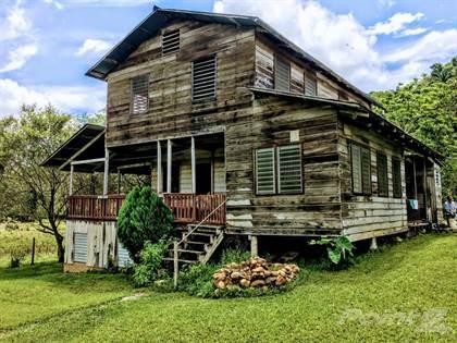 Farm And Agriculture for sale in Belize 74.7 Acres Farm near Barton Creek Mennonite Community, San Ignacio, Cayo