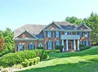 Single Family for sale in 10118 NEDRA DR, Great Falls, VA, 22066