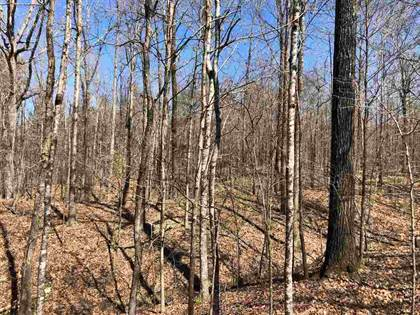 Lots And Land for sale in 0 DIXON RD, Duck Hill, MS, 38925