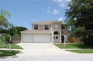 Single Family for sale in 2944 SHANNON CIRCLE, Palm Harbor, FL, 34684