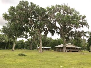 Farm And Agriculture for sale in 343 NE 396th Street, Cross City, FL, 32628