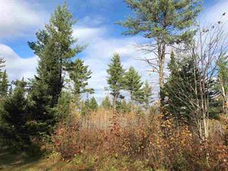 Single Family for sale in 6340 Harding, Florence, WI, 54121