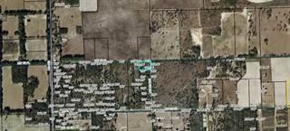 Land for sale in 00 NW 30th AV/NW 52 Pl, Bell, FL, 32619