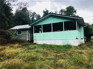 Residential Property for sale in 2112 Noble Ridge Road, Reedy, WV, 25270