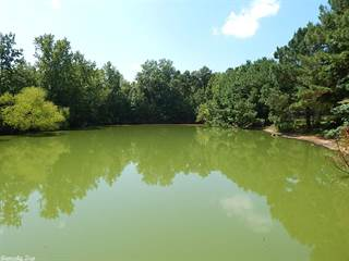 Farm And Agriculture for sale in 896 Hwy 290, Greater Lake Hamilton, AR, 71913