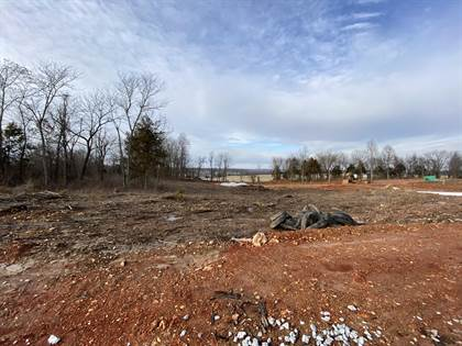 Lots And Land for sale in Lot 28 The Estates Of Enniskerry, Nixa, MO, 65714
