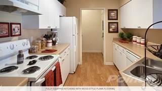 Apartment for rent in 210 Watermark - Wave, Bradenton, FL, 34205