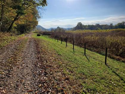 Farm And Agriculture for sale in 10 Old Landing Road, Owenton, KY, 40359